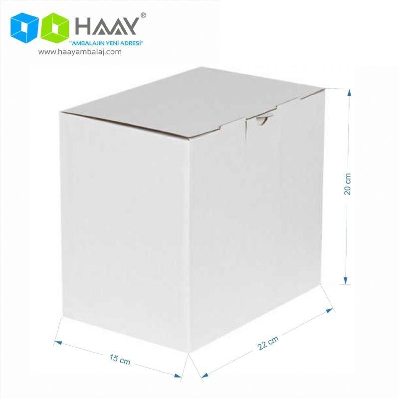 22x15x20 cm Beyaz Kilitli Kutu